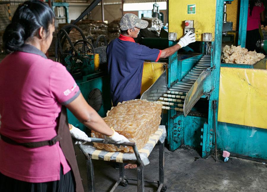 biyagama factory